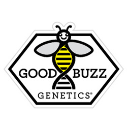 Good Buzz Genetics