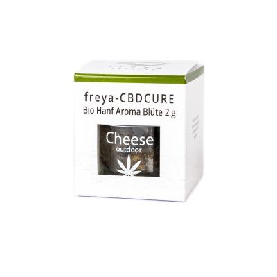 Cheese CBD Blüten